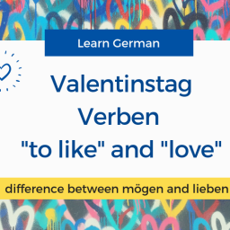the difference between the verbs mögen and lieben